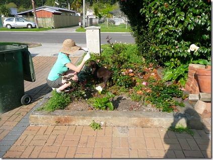 gardening   pizza 003