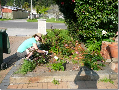 gardening   pizza 004