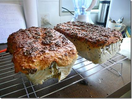 busy person's bread 017